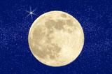 月の土地 芸能人